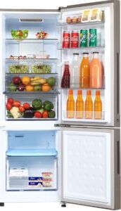 Bottom Mounted Refrigerator